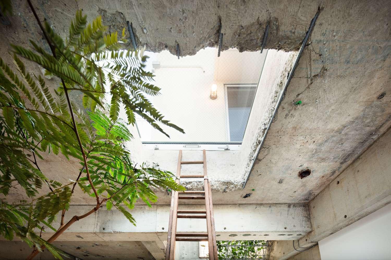 中央のトップライト。はしごを上ると屋上へ