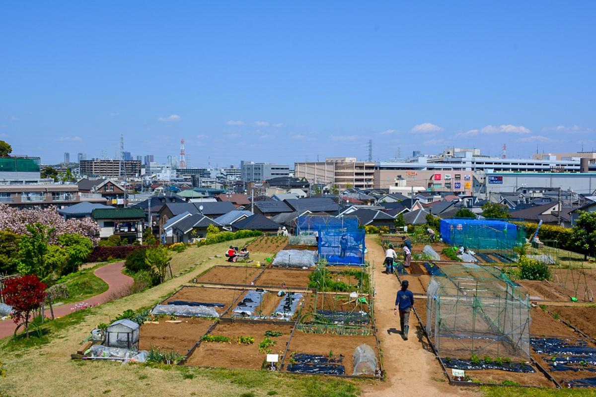 近くにある市民農園