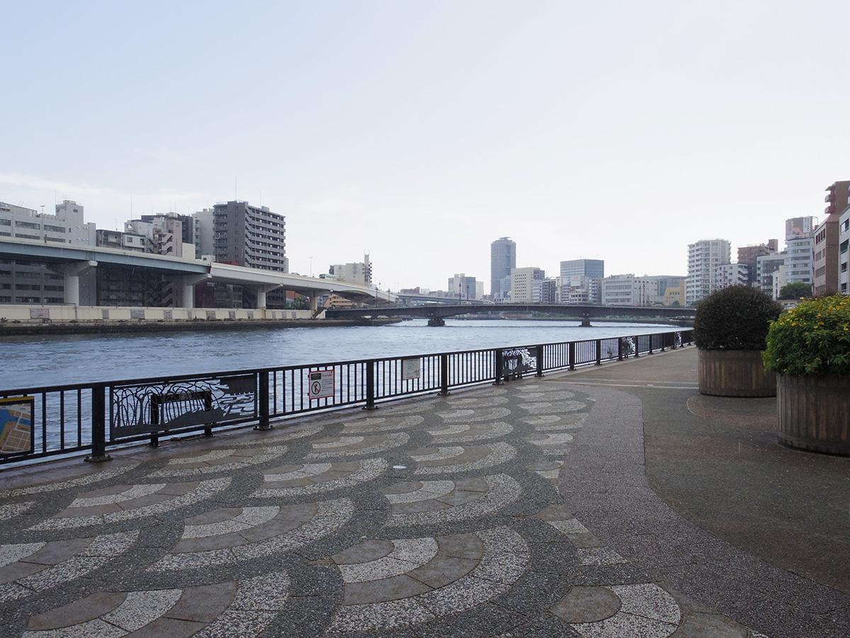 建物の裏は隅田川テラス。散歩にちょうどいい