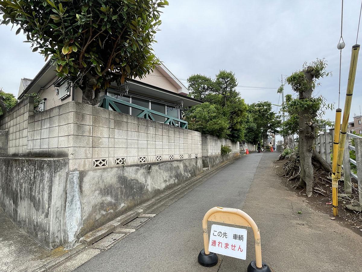 建物前面の道。道路の真ん中に木が立っていて、車は通れない。このあたりでは少し有名なスポット