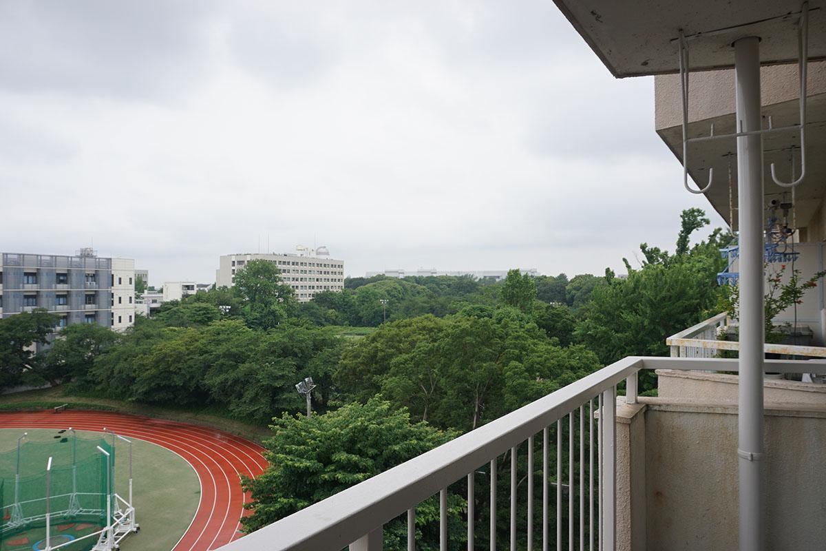 西側を見る。グラウンドの緑の奥に駒場公園が見える