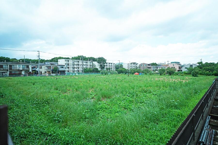 LDKから隣の生産緑地を見るとこんな感じ。まるで草原