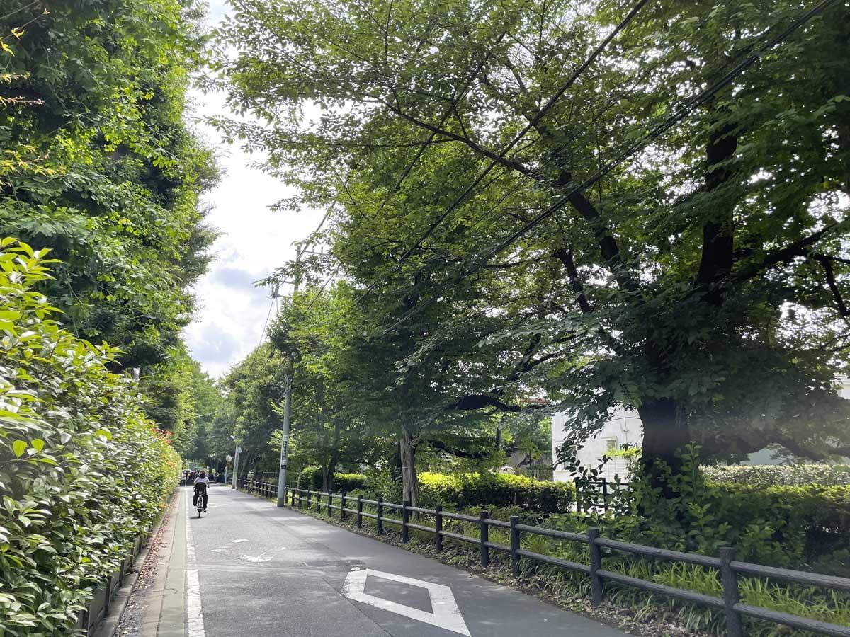 千川上水の緑道を自転車で走り抜けるのがお気に入り