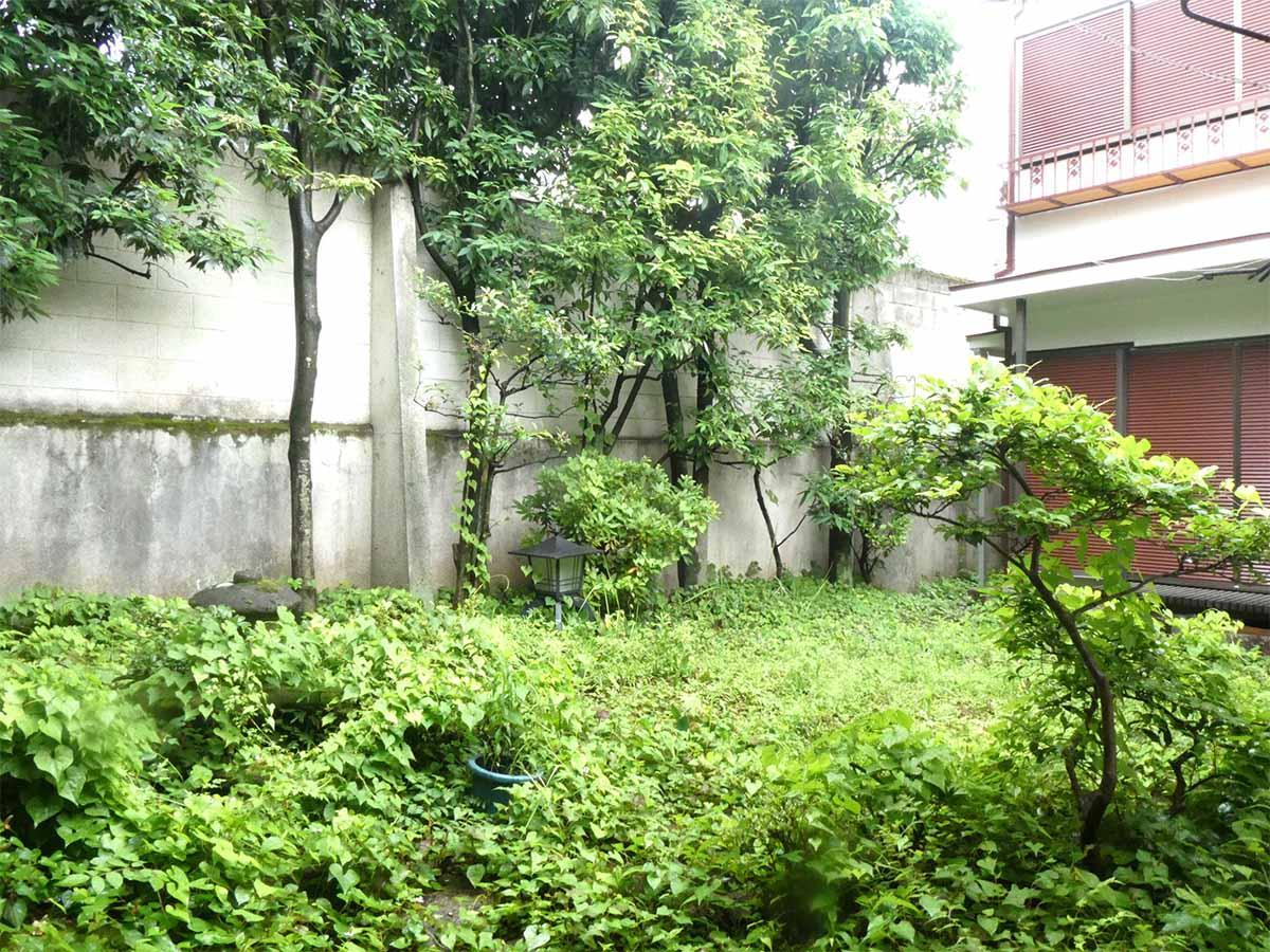 室内から庭