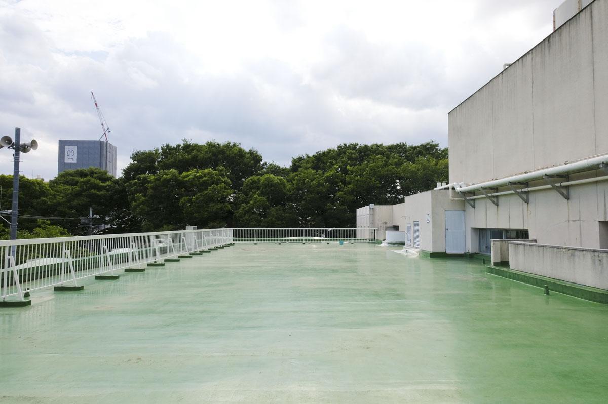 【3F】屋上:こんなに大きな屋上もついてます、もちろん奥のもさもさは参道! こちらはイベントスペースとして時間貸なども計画中