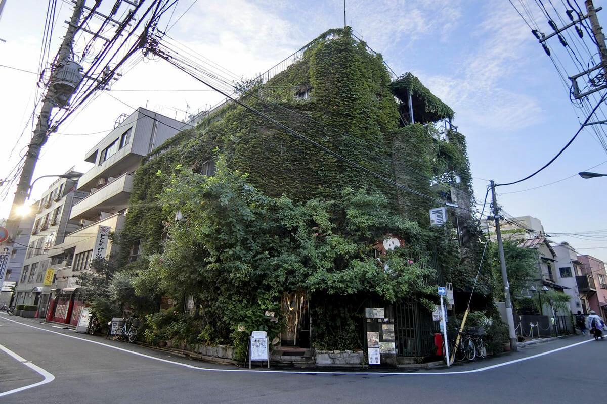アカバネの森に住む - 改装可 - (北区赤羽の物件) - 東京R不動産