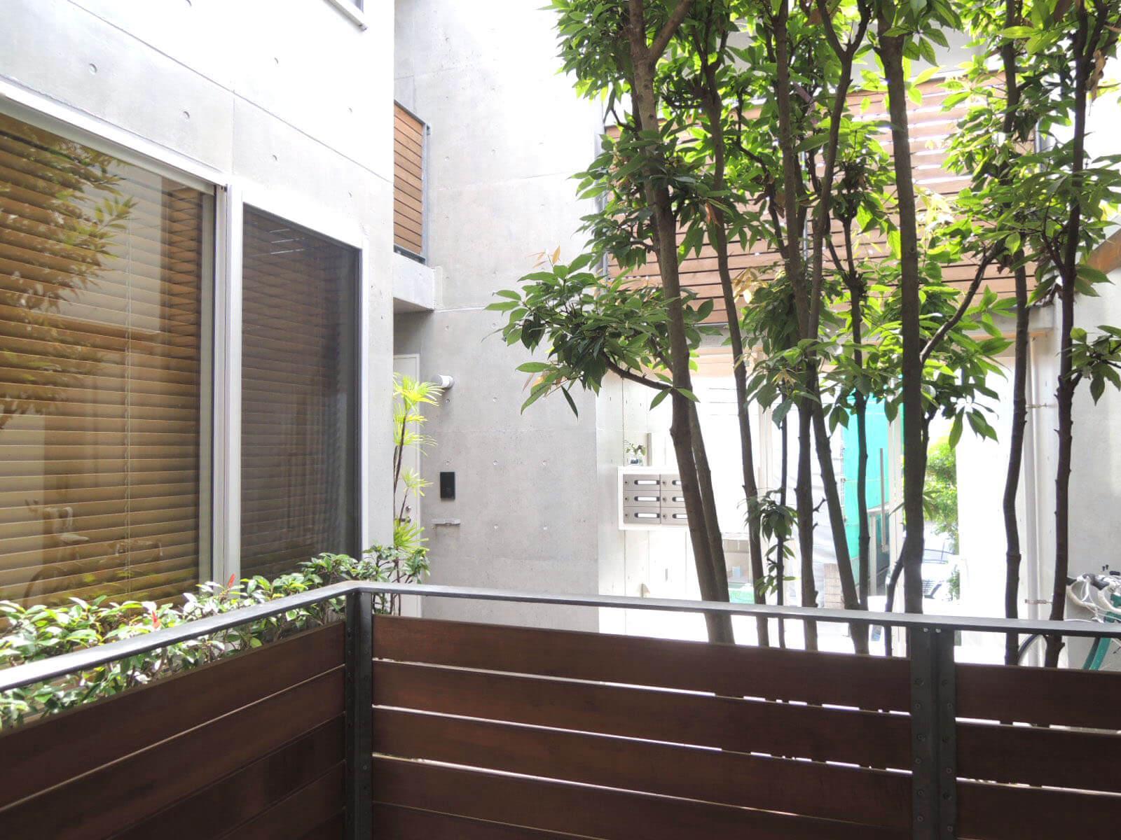 木製の目隠しとシンボルツリー、コンクリートの組合せが美しい窓辺