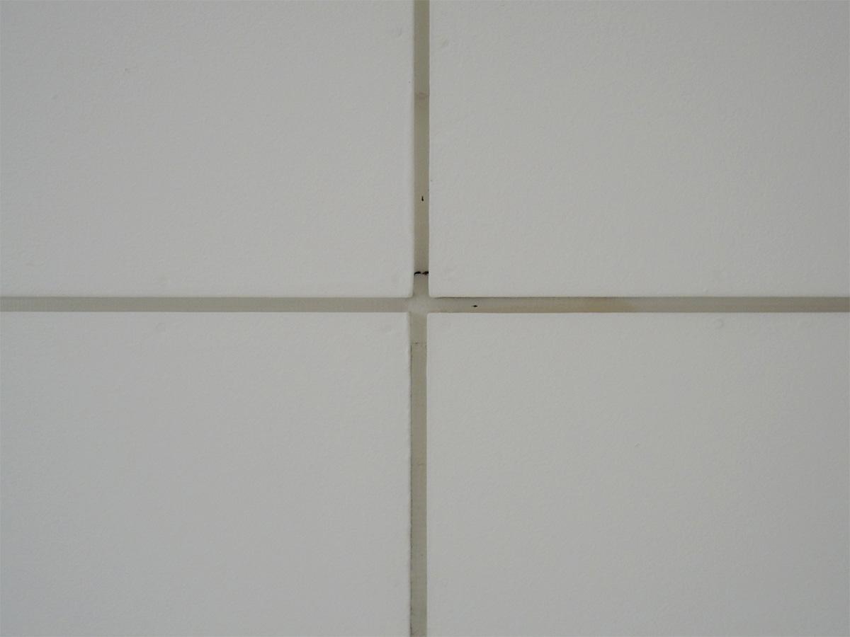 参考写真:天井の仕様