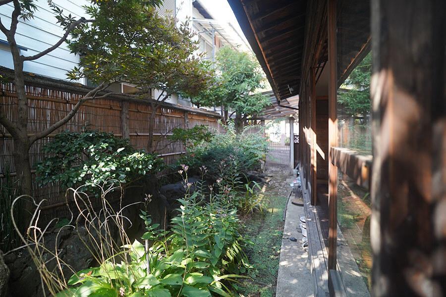 庭は貸主が依頼する庭師にて年数回剪定をして、整えています