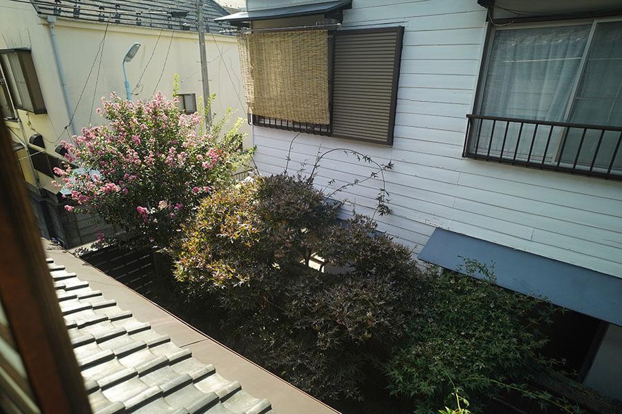 2階の西側の部屋からは庭が眺められます