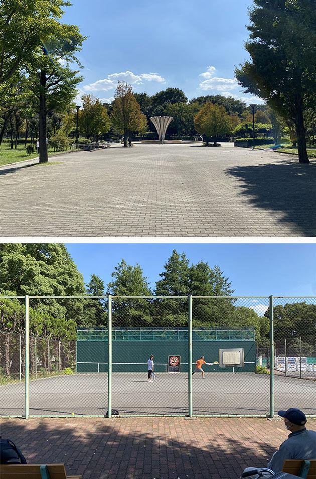 赤塚公園はテニスコートと野球場