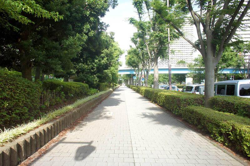 駅までの道は歩きやすい緑道
