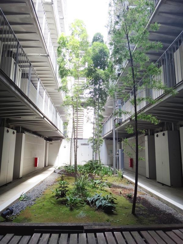 竹の美しい中庭。