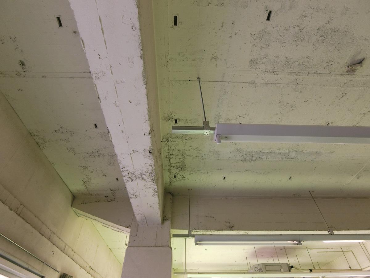 1階:天井がいい表情を出しています