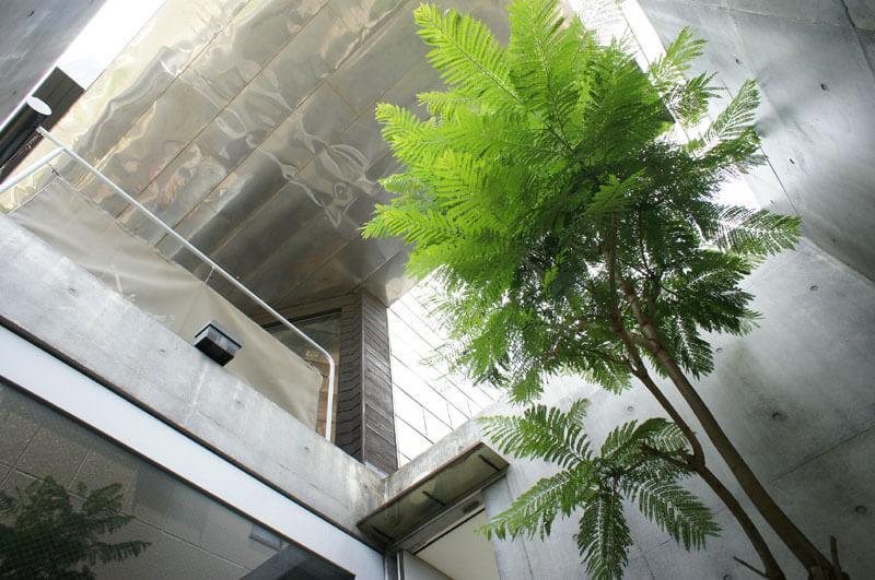 1階中庭から3階を眺める