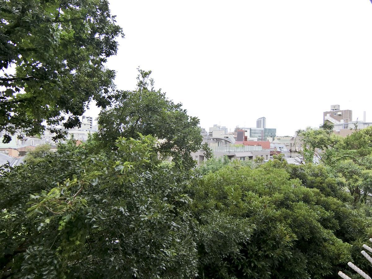 敷地内の緑が見え、奥にビル群の眺望。晴れの日は気持ち良さそう!