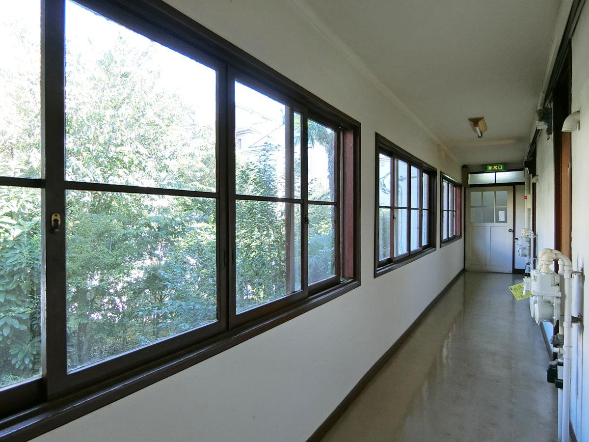 廊下の木枠の窓から緑が楽しめる