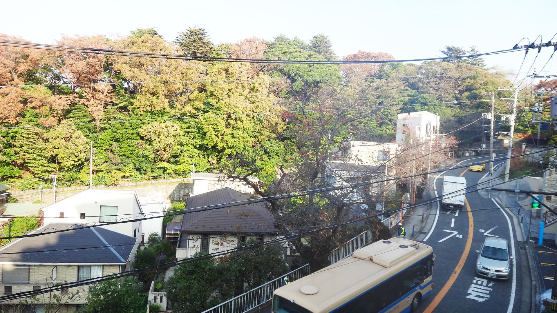 坂を登った先は山手の街並みです。坂沿いには桜の木が立ち並んでいます