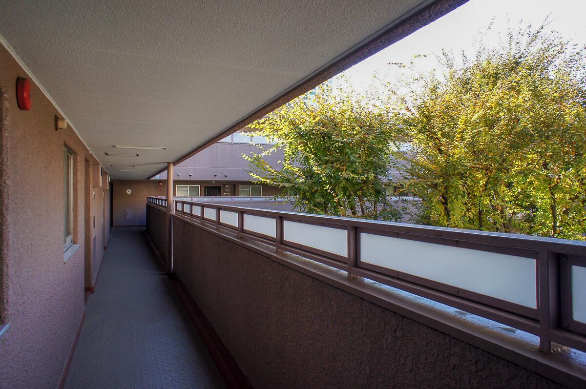 共用廊下から中庭の緑が見える