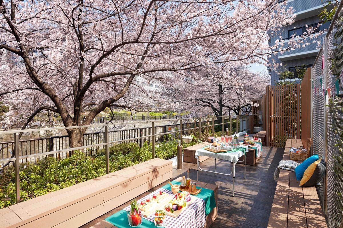 目黒川沿いに設けた共用の桜テラス