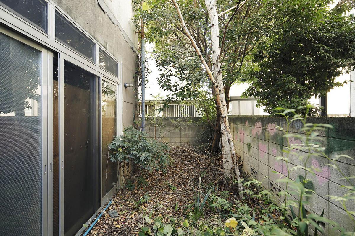 1階の庭。外壁はかなり古めです