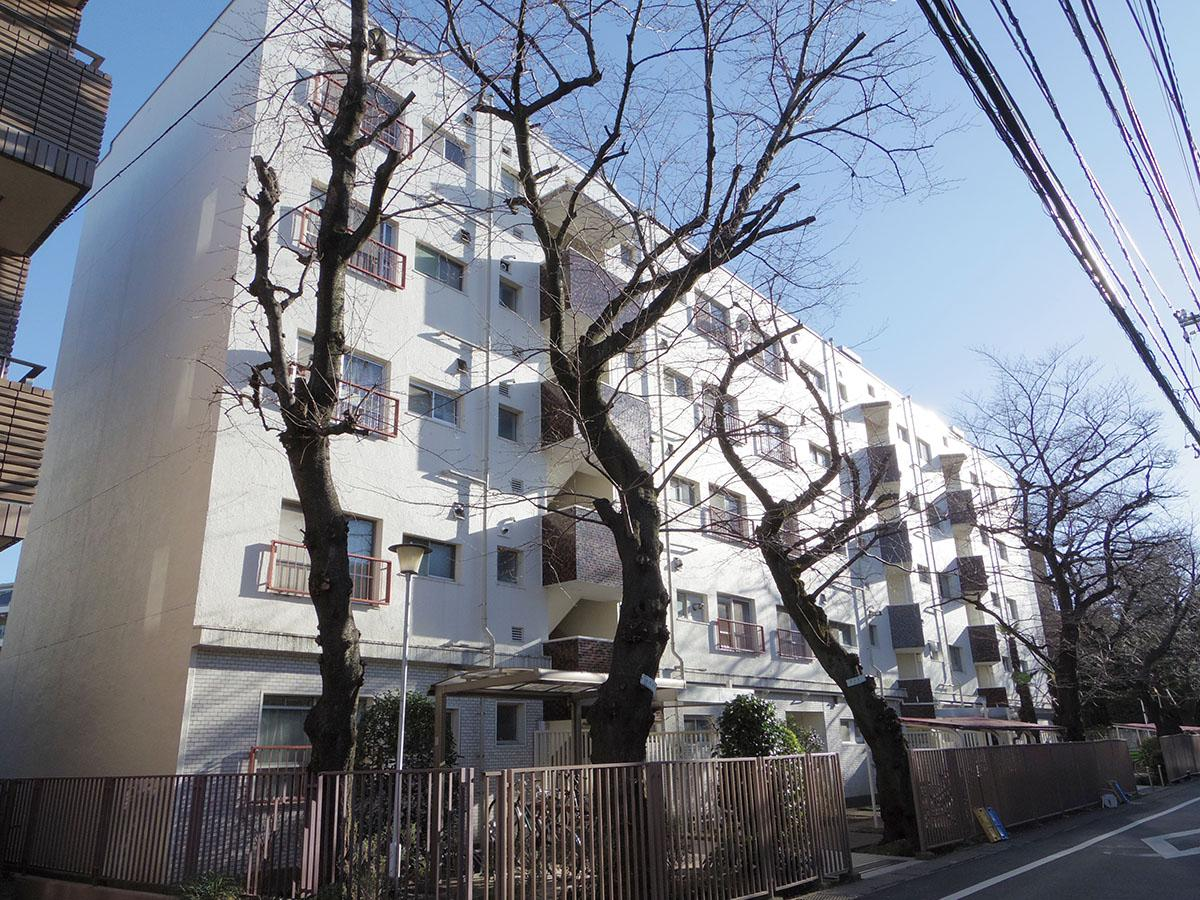 外観もレトロでいい感じ。6本の桜の木が住人を見守っています