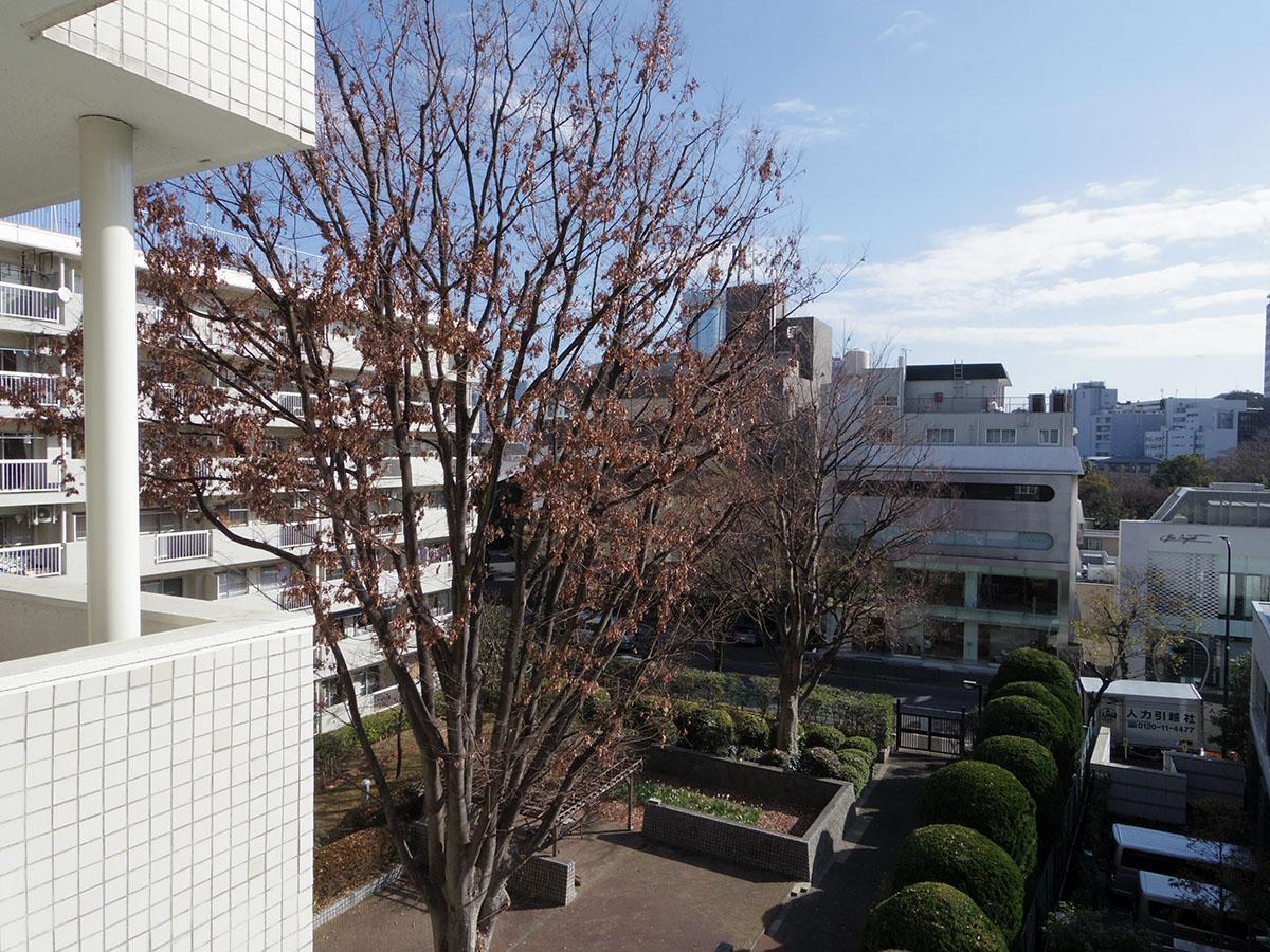 リビング東側の窓からはこの眺望!広い庭バンザイ!