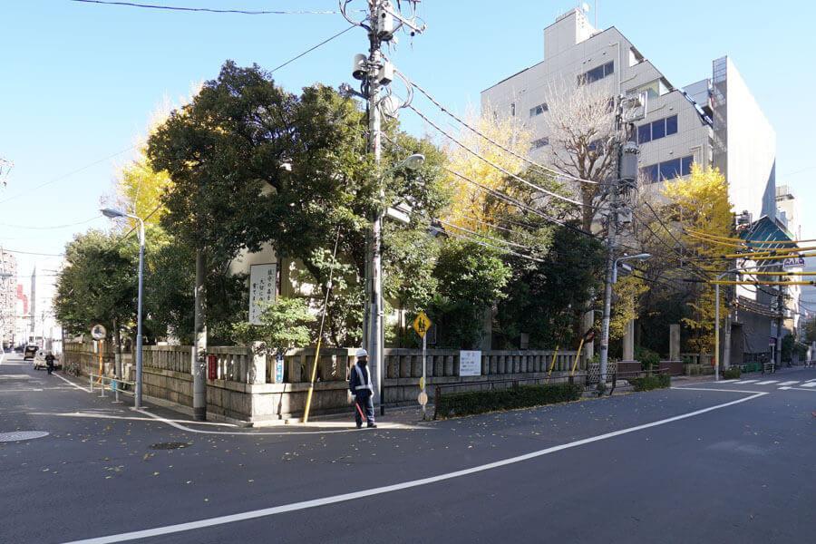 隣の神社。秋はイチョウの木がきれいです