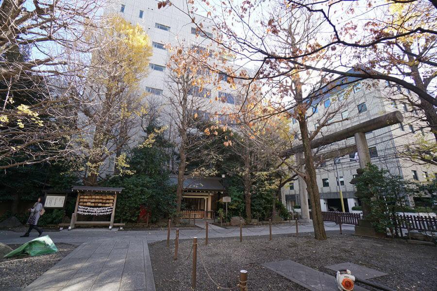 神社の境内は緑がモサモサ。ちょっと休む場所もあります