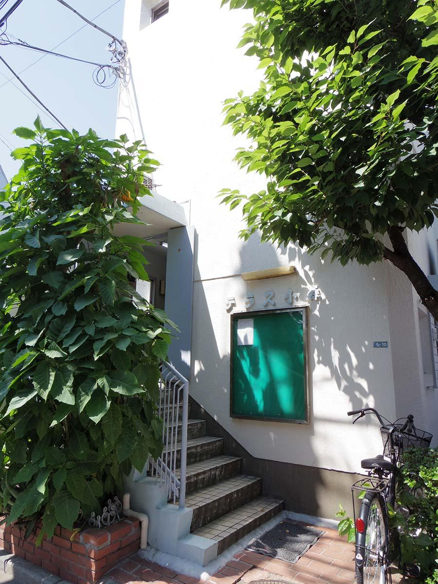 この階段を上がったところがエントランス。緑も多い