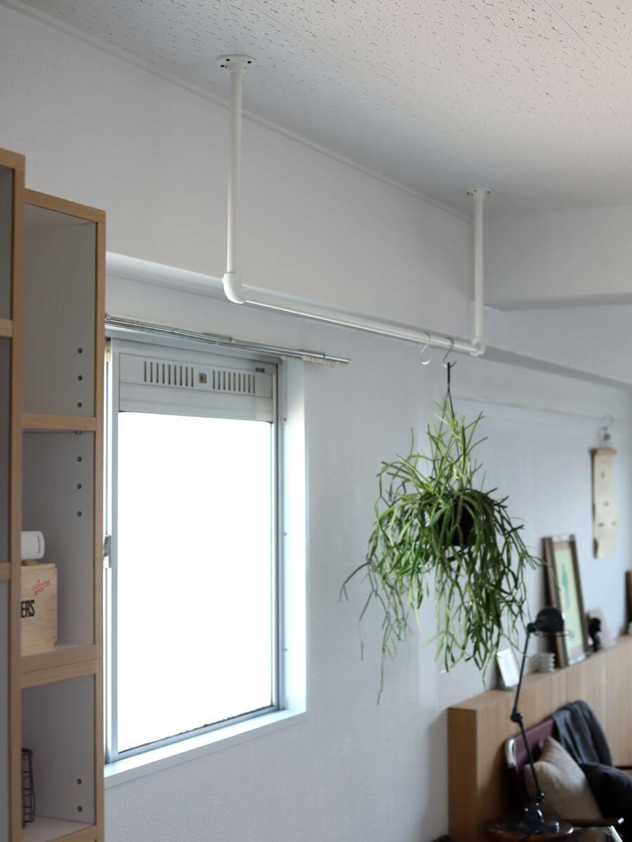天井付けのパイプには、植物や洋服をかけたり、室内干しにもちょうどいい窓前です。
