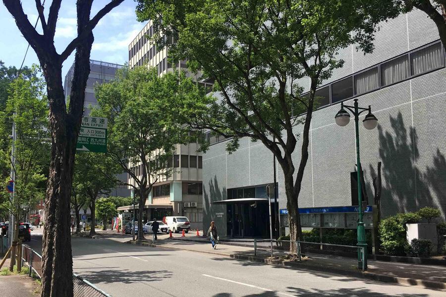 博多駅徒歩5分ですが前面道路は街路樹も多く落ち着いた並木道