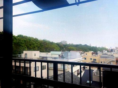 眺望。左手にみえる緑は小石川植物園