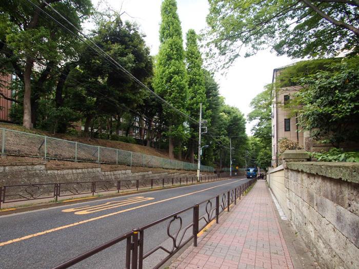 駅からは筑波大学の緑を眺めながら歩く道のり
