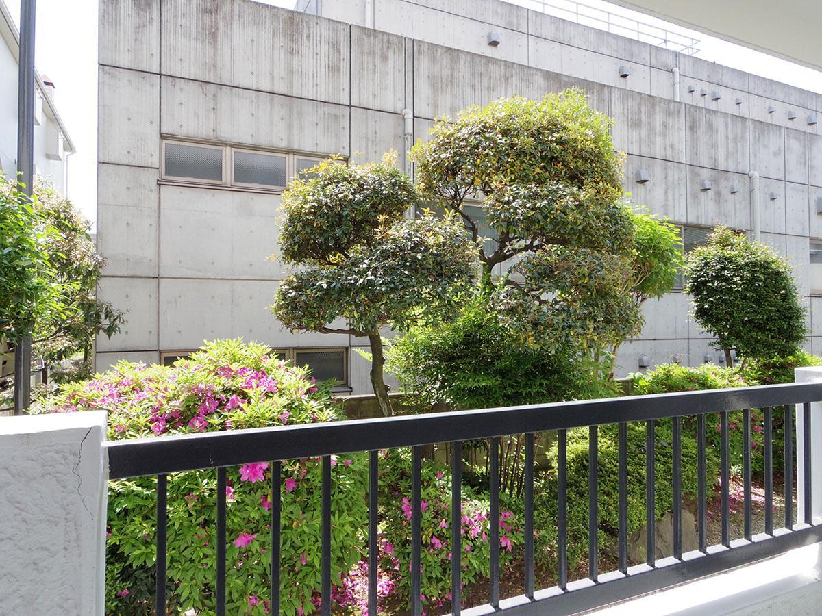 窓の外には敷地の植栽
