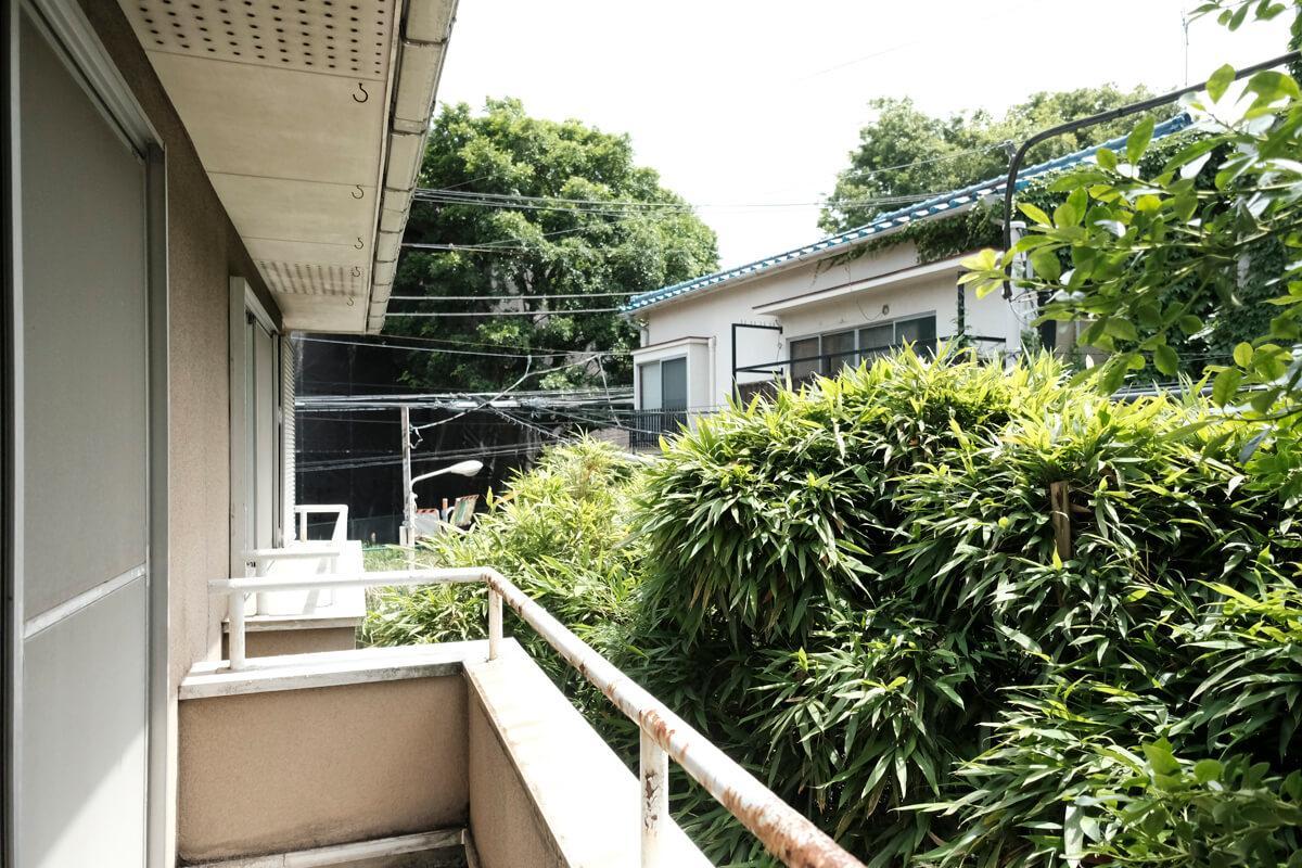 2階:敷地の隣には、もさもさの緑