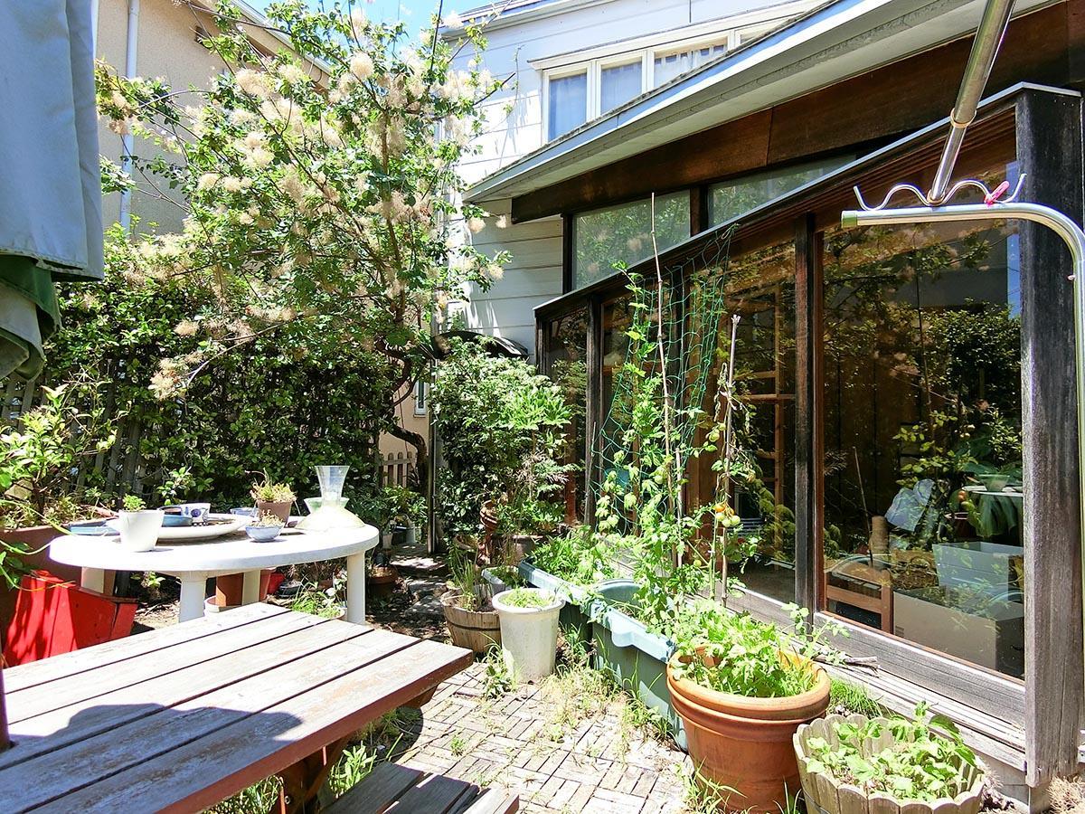 庭から広縁方向。窓を開け放ったら、気持ちよさそう!庭にはスモークツリーが植えられている