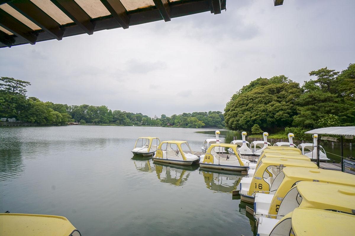 洗足池公園。ボート乗り場がある