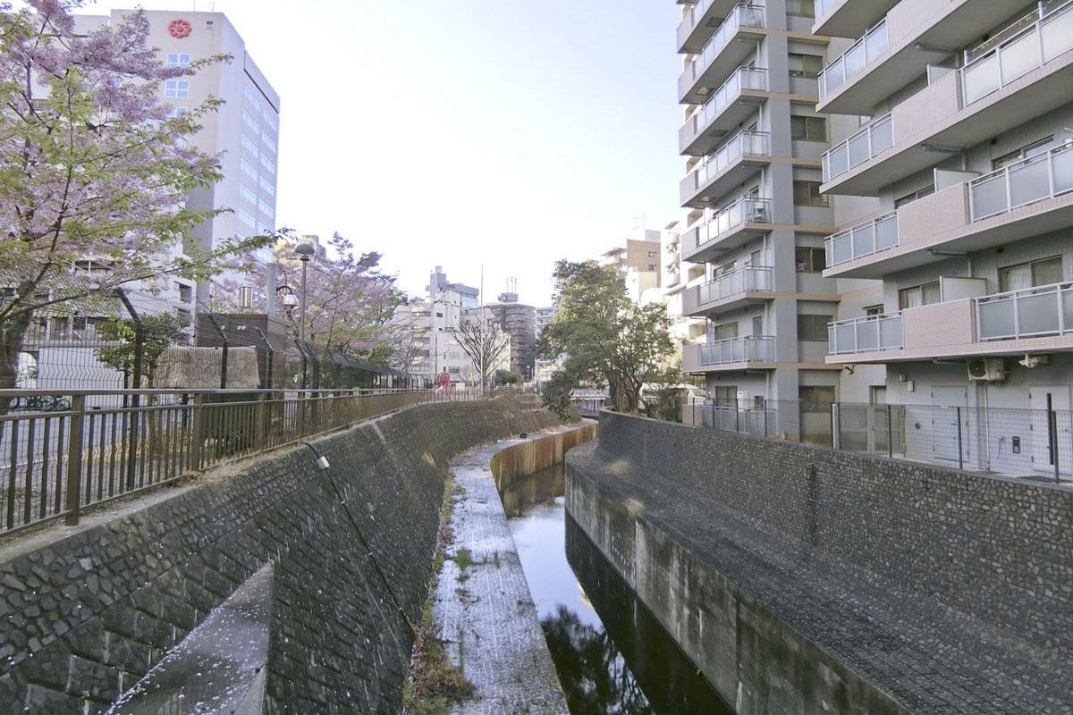 渋谷川(写真は半年前のもの)