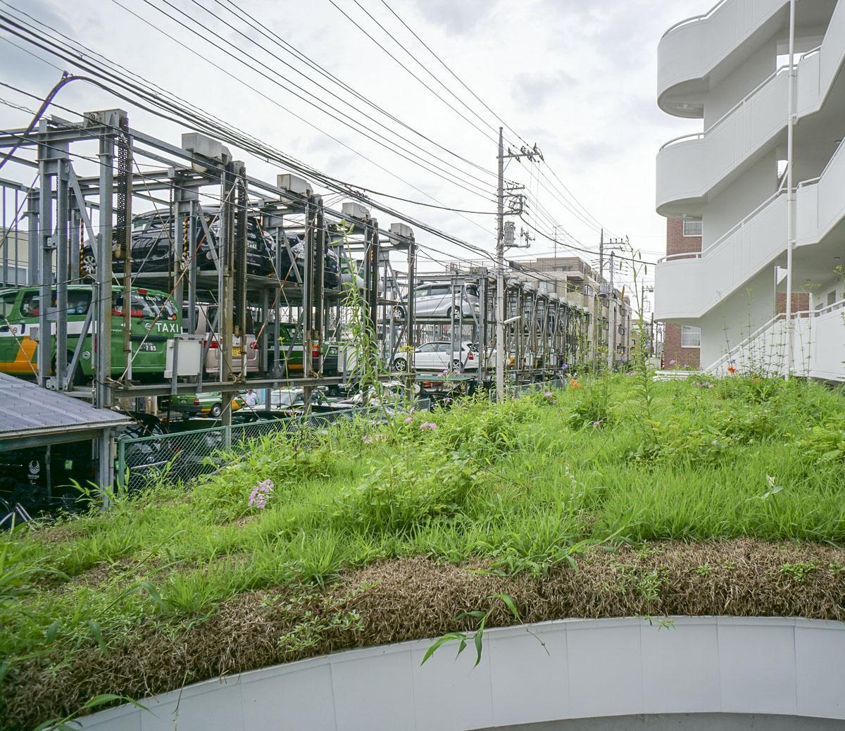 緑化されたエントランス部分屋上