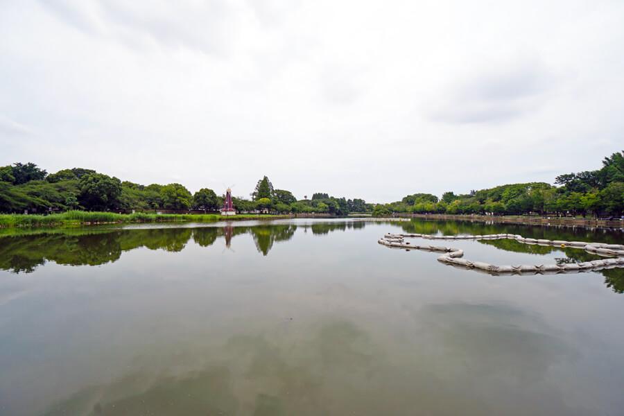 すぐ近くの浮間公園。大きな池があり、のんびりした空気が流れています