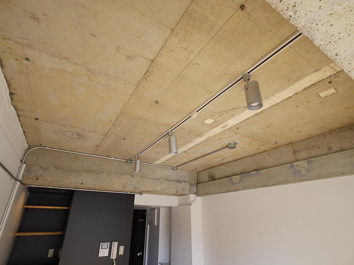 天井にはライティングレールを設置