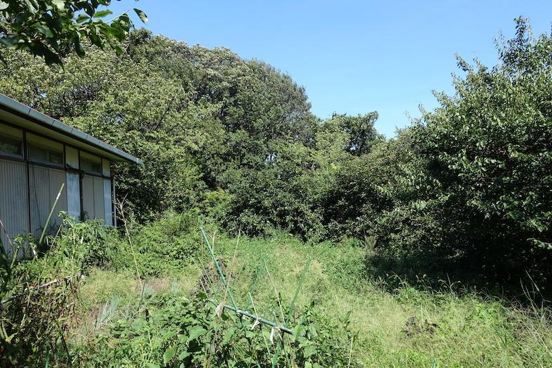 敷地には広い畑もあります!使用料は月額5,000円