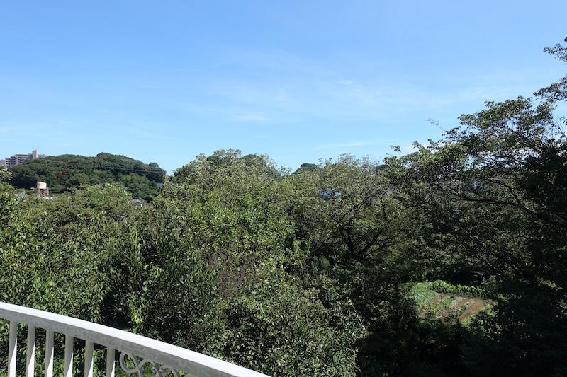 2階からの眺めは広い空とたくさんの緑だけ!