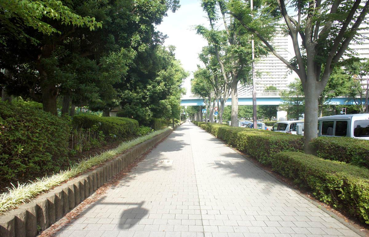 駅までの歩道は歩きやすい