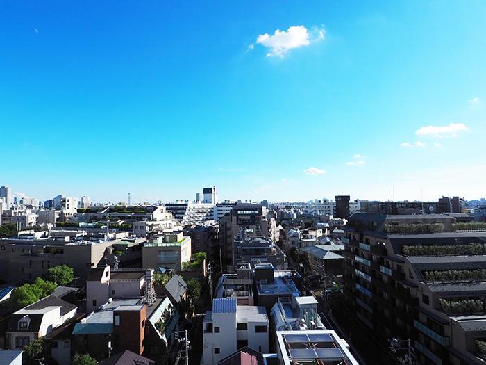 ぜいたくな眺望と温もり空間 (渋谷区恵比寿南の物件) - 東京R不動産