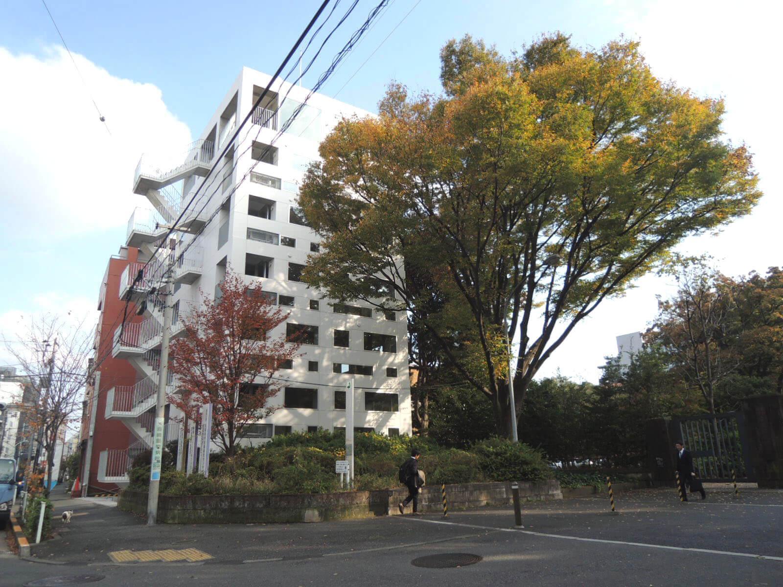 大きな木が寄り添う白いビルの3階です。