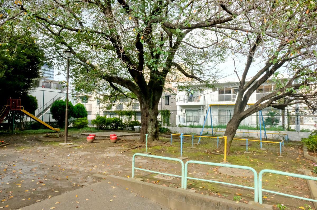 向かいの公園。右奥に見える白い建物が今回のマンション