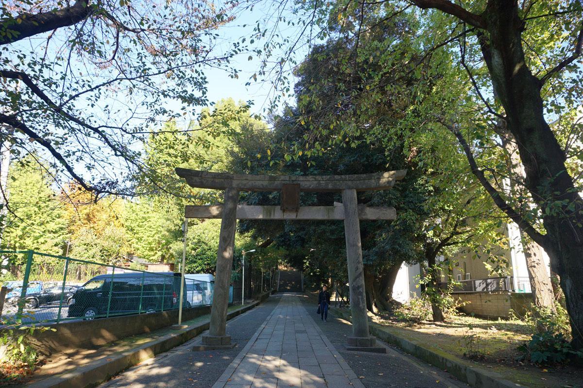 氷川神社:結構立派な参道