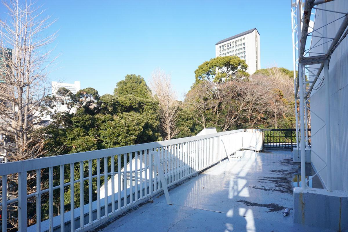 4階ルーフバルコニー:氷川神社の緑がモサモサ